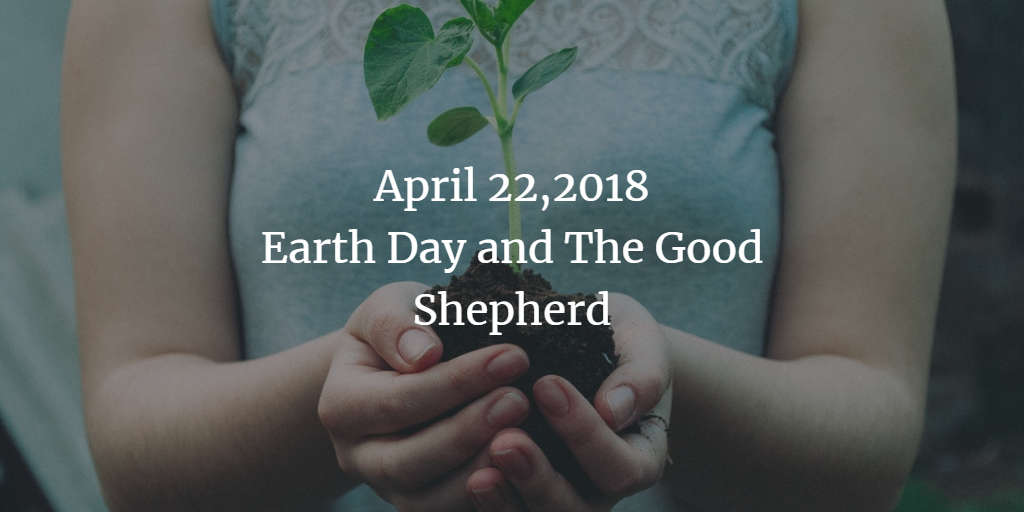 Homily for April 22,2018 Earth Day and The Good Shepherd - Deacon Anne Anchor